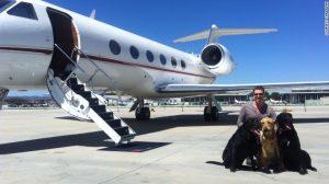 chiens sur jet privé
