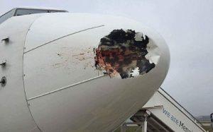 Boeing 737-800 après collision avec un oiseau