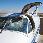 Collision avec les oiseaux, quel danger pour l'avion ?