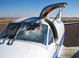 avion privé après collision avec un oiseau