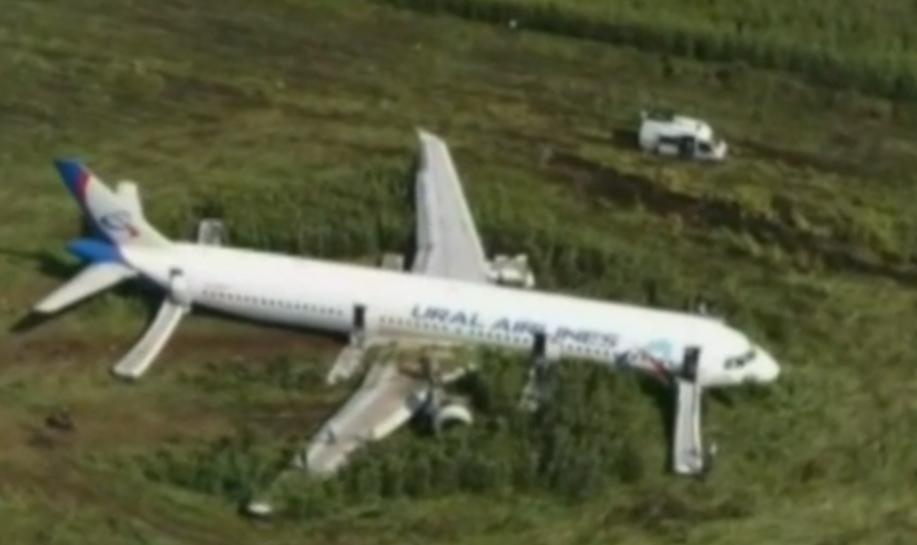 Airbus A321 endommagé par un impact d'oiseaux en août 2019
