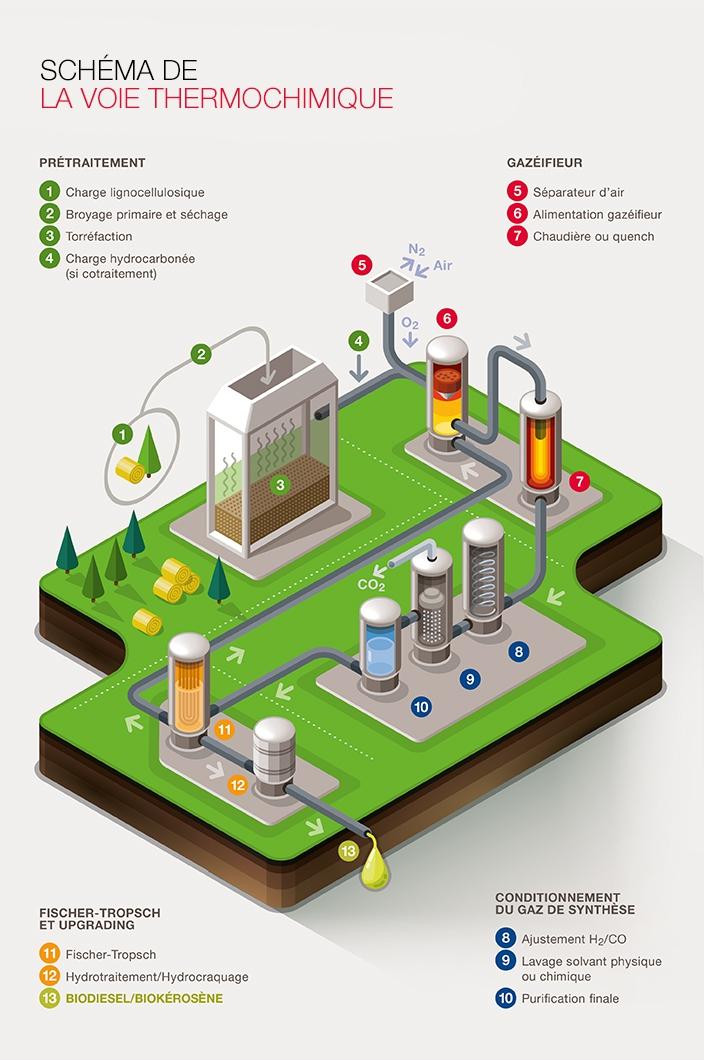 Projet biofuel Total, à prtir de la cellulose - image Total